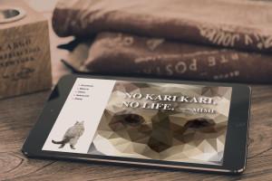 Hip_iPad_02